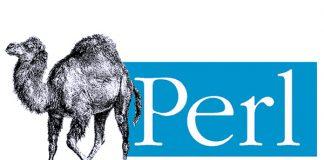 Perl programlama dili, Practical Extraction and Report Language, Pratik Çıkarım ve Raporlama Dili, Perl nedir, Perl ne işe yarar, Perl hakkında bilgi, Perl nasıl kullanılır